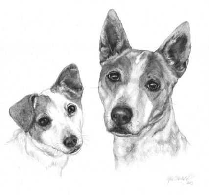 Graphite drawing_Two dogs